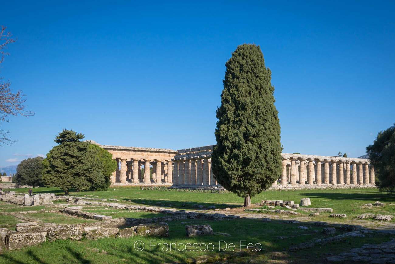 /public/upload/territorio/big/Paestum 2.jpg